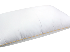 Balmain Tencel Downfeel Pillow